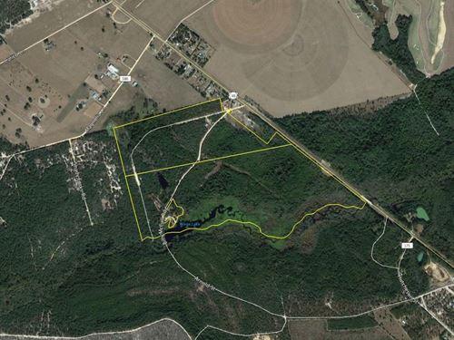 165 Acres In Tattnall County : Reidsville : Tattnall County : Georgia