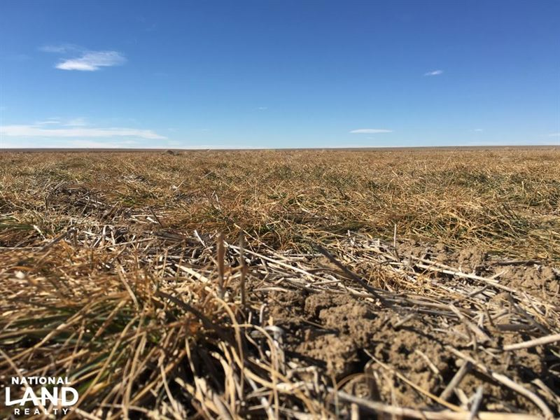 Roi - Kiowa County Crp : Eads : Kiowa County : Colorado