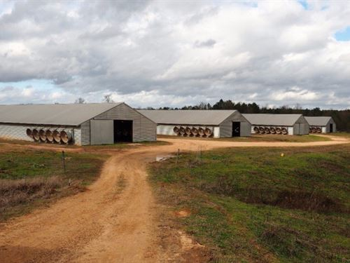 Poultry Farm With Residence Liberty : Liberty : Amite County : Mississippi