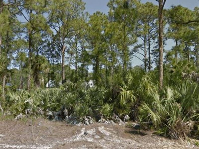Owner Finance Land Brevard County : Land for Sale by Owner