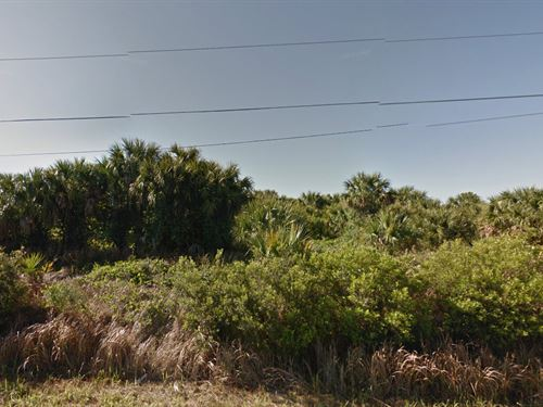 .23 Acre Lot For Sale In Palm Bay : Palm Bay : Brevard County : Florida