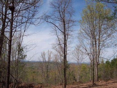 Candler Mountain - Views/Creeks : Goodwater : Coosa County : Alabama