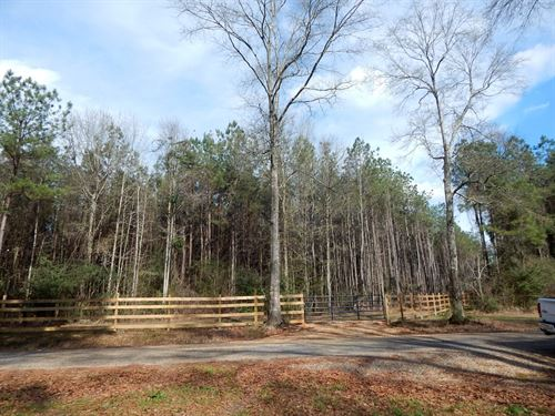 26 Acres With All Utilities : Tylertown : Walthall County : Mississippi