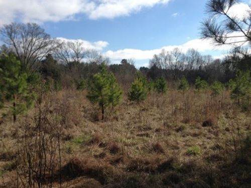 30.8 Acres In Holmes County In West : West : Holmes County : Mississippi