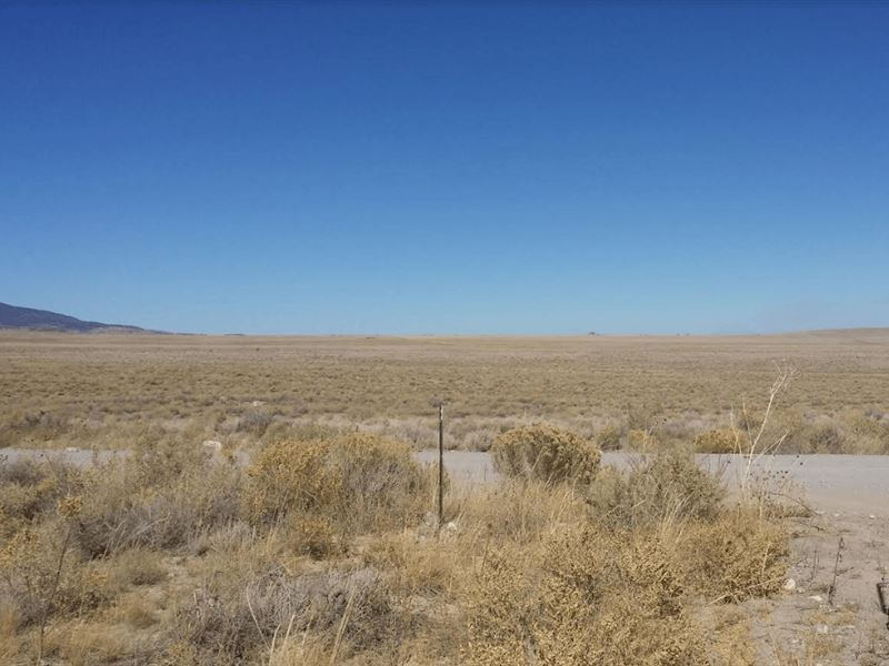 40 Acres Vacant Land In Colorado : Sanford : Conejos County : Colorado