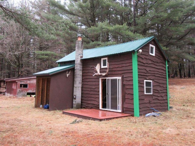 53 Acres Hunting Cabin Grafton Ny : Grafton : Rensselaer County : New York