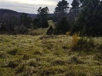 Land For Sale In Missouri : Gainesville : Ozark County : Missouri