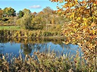Upstate New York Land For Sale : Fabius : Onondaga County : New York