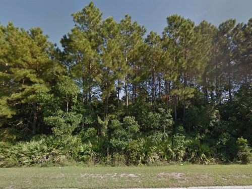 .11 Acre In Jacksonville, Fl : Jacksonville : Duval County : Florida