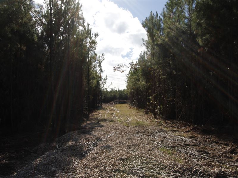 River Bend Lot 8 : Oberlin : Allen Parish : Louisiana