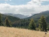 Lost Sapphire Ranch Lot : Philipsburg : Granite County : Montana