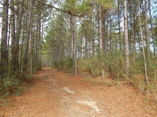 Carroll Road - 125092 : Bassfield : Jefferson Davis County : Mississippi