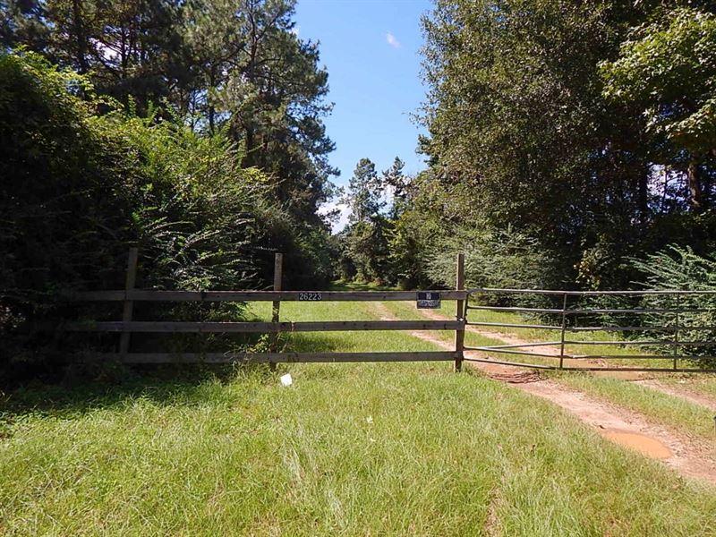 Harvey Road - 124599 : Franklinton : Washington Parish : Louisiana