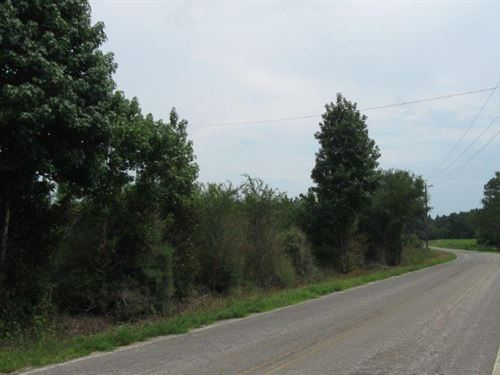70 Acres Mt Sinai Road : Foxworth : Marion County : Mississippi