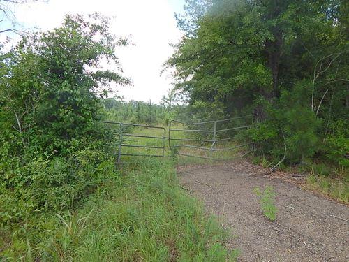 Airport Road (72) - 124235 : Prentiss : Jefferson Davis County : Mississippi