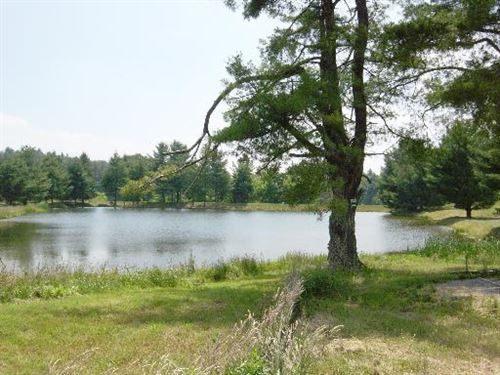 Beautiful Lot On Stoneridge Lake : Bent Mountain : Roanoke County : Virginia