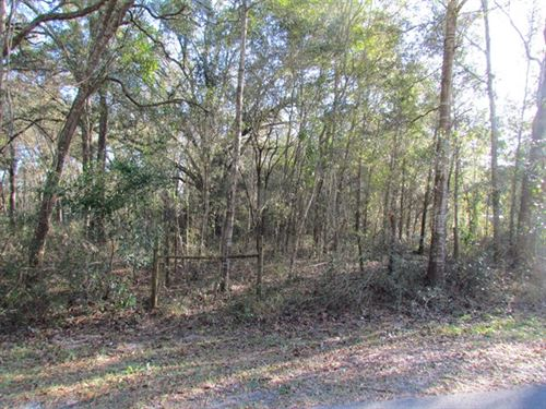 .7 Acre Lot 773293 : Fanning Springs : Levy County : Florida