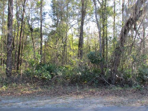 .26 Ac Lot In Subdivision 773294 : Fanning Springs : Gilchrist County : Florida