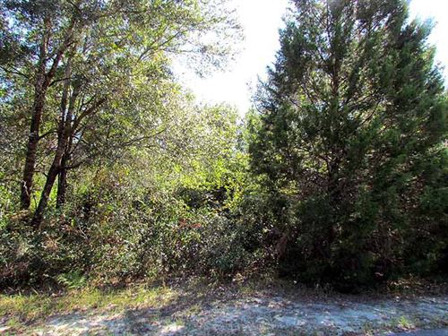 3.05 Acres 771213 : Chiefland : Levy County : Florida