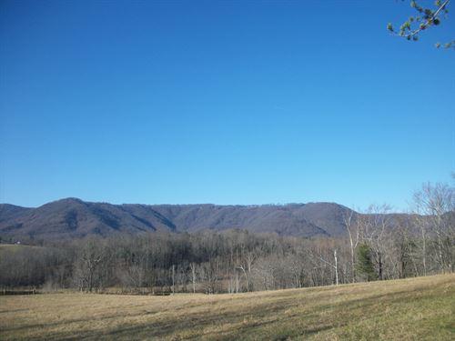 Mountain View Parcel - Lot 2 : Ararat : Patrick County : Virginia