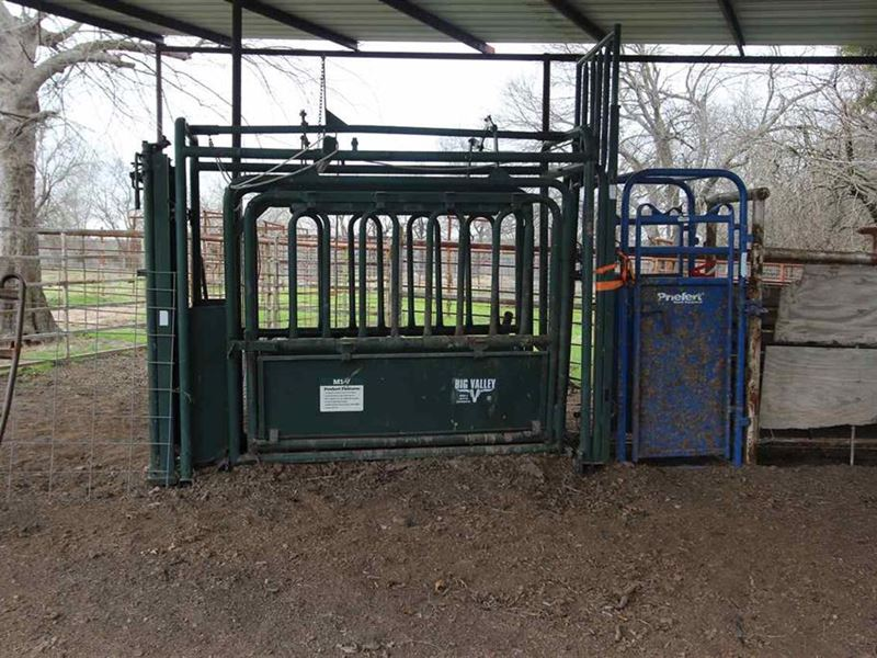 Northeast Texas Cattle Ranch : Roxton : Lamar County : Texas