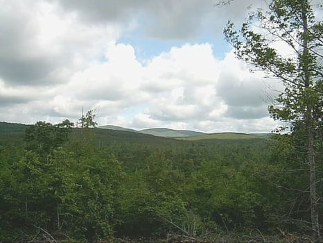 Mountain Retreat Acreage-28+ Acres : Ashland : Clay County : Alabama