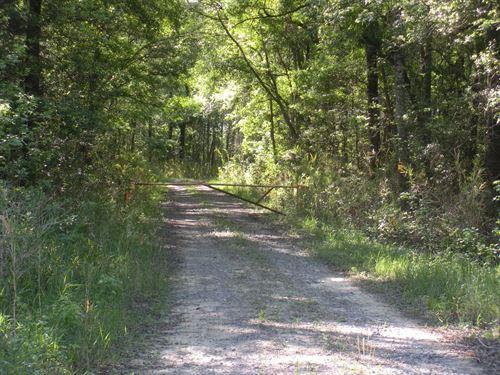 Columbus County Hunting Tract : Whiteville : Columbus County : North Carolina
