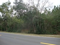 34.63 Acres 773299 : Trenton : Gilchrist County : Florida