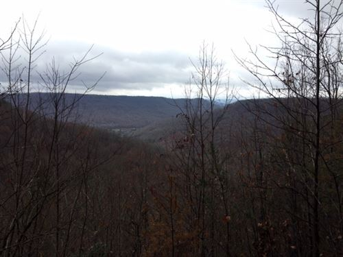 5.43+/- Acrees With Amazing Views : South Pittsburg : Marion County : Tennessee