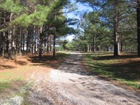 Log Home On 72+/- Acres : Canton : Madison County : Mississippi