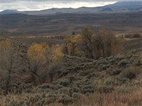 40 Acres In Gunnison : Gunnison : Gunnison County : Colorado
