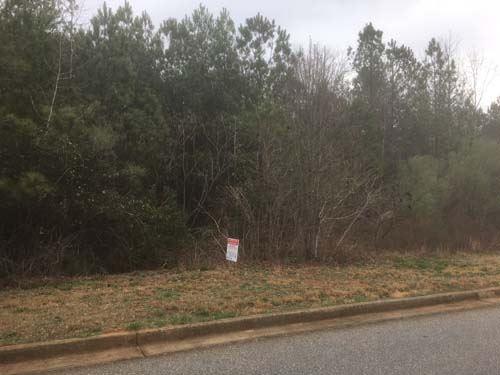 Multi-Seller Auction : Covington : Newton County : Georgia
