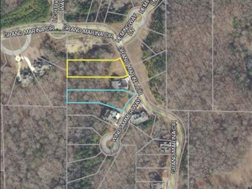 Multi-Seller Auction : Gainesville : Hall County : Georgia