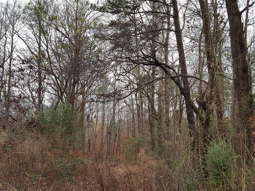 Multi-Seller Auction : Snellville : Gwinnett County : Georgia