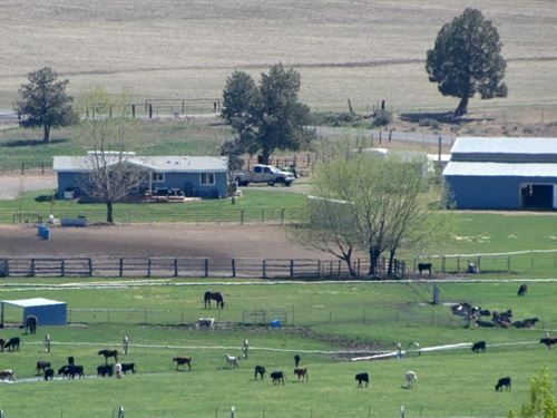 Horse Trainers / Calf Ropers Haven : Bonanza : Klamath County : Oregon