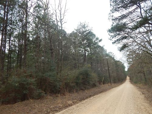 11.09 Acres- Good Timber : Gloster : Amite County : Mississippi
