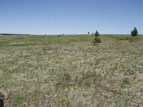 Las Animas County, Colorado Land : Aguilar : Las Animas County : Colorado