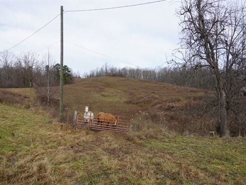 Very Private 27.49 Acres Of Mountai : Ivydale : Clay County : West Virginia