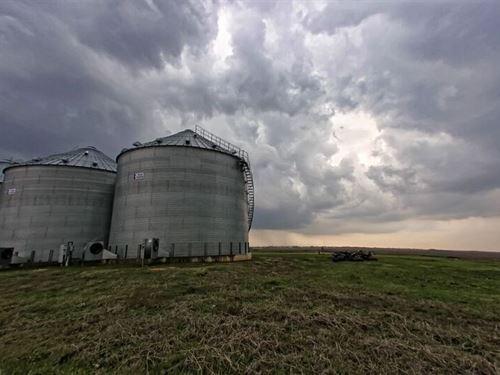 655 Acre Farm - Lamar County : Blossom : Lamar County : Texas