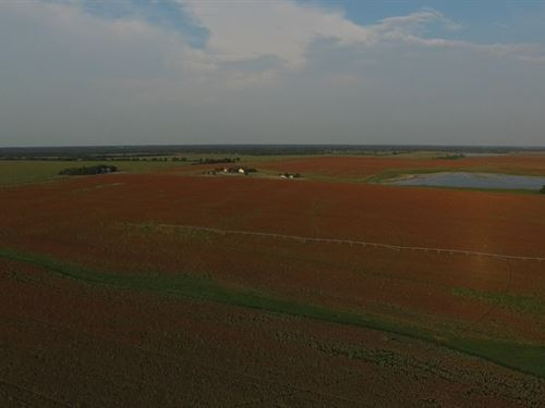 1,460 Acre Farm : Blossom : Lamar County : Texas