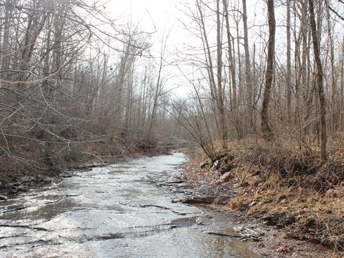 Dodds Rd - 29 Acres : Otway : Pike County : Ohio