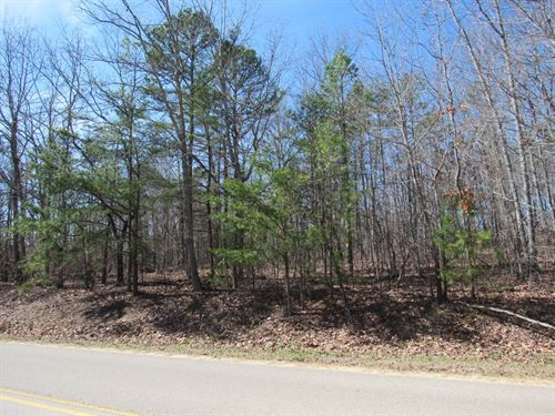 1-005 Pine Mountain Road Estate : Pinson : Jefferson County : Alabama