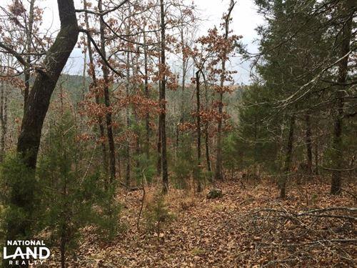 24+/- Acres Timberland & Hunting Pr : Delaware : Logan County : Arkansas