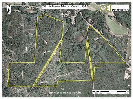 335 Acres : Ideal : Macon County : Georgia