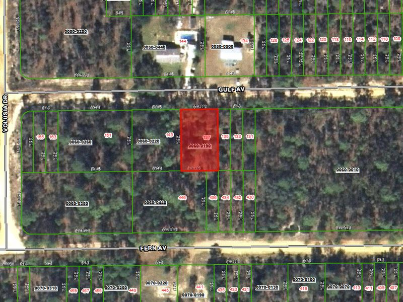 For Sale By Owner Florida >> 99 Down 100 Month Owner Finance Land For Sale By Owner
