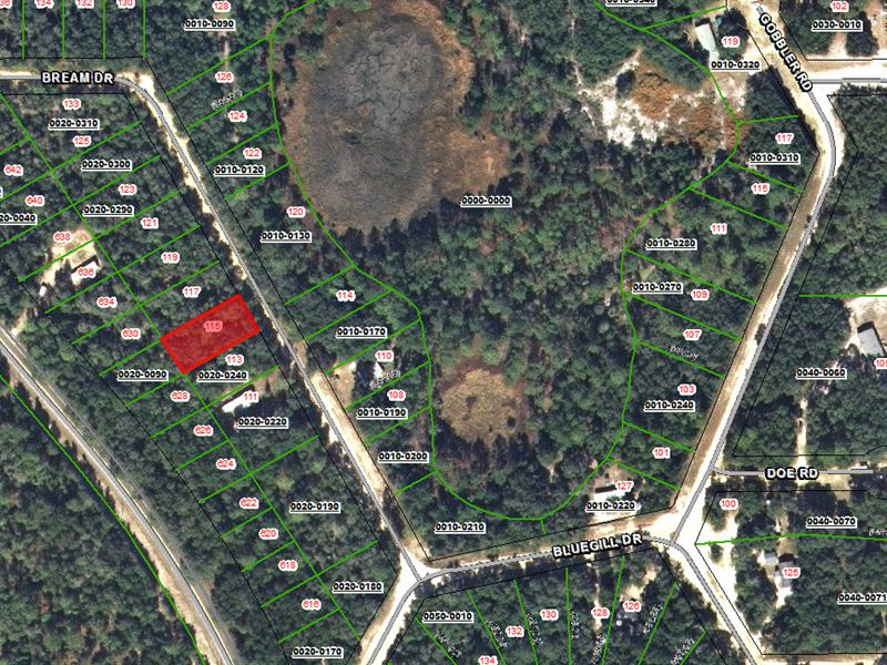 Land Sale With Financing Available : Land for Sale by Owner : Interlachen :  Putnam County : Florida
