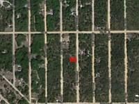 $99 Down, $100/Month Owner Finance : Interlachen : Putnam County : Florida