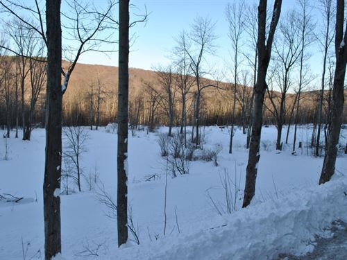 30 Acres Borders Forest Richford Ny : Richford : Tioga County : New York