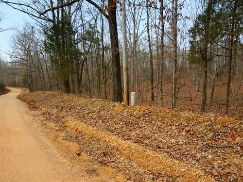 Wooded 6.25 Acres : Bon Aqua : Hickman County : Tennessee