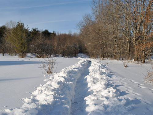 2 Acres Near 3 Forests Richford Ny : Richford : Tioga County : New York